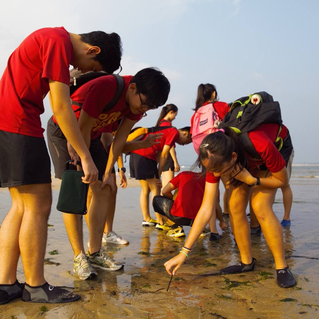 Changi Beach Intertidal Walk, Pioneer Junior College